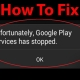 rayanekomak-Google Play Services Has Stopped