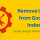 rayanekomak-Remove-URLs-from-Google-Index (1)